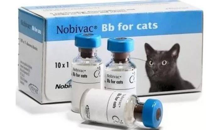 Инструкция по применению вакцины нобивак