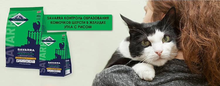 Обзор корма для кошек савара (savarra): виды, состав, отзывы