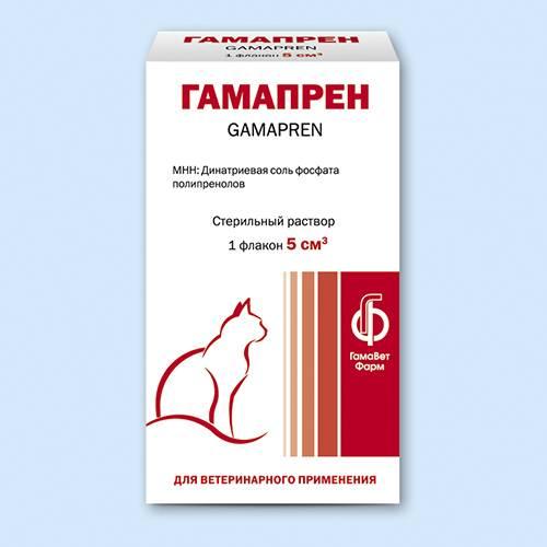 Герпесвирусный ринотрахеит кошек. использование гамапрена