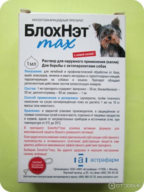 Препараты обзор препарата для кошек блохнэт. блохнэт для собак