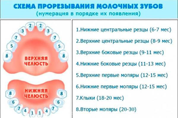 Болезни десен и зубов - пародонтит, пульпит, пародонтоз, кариес