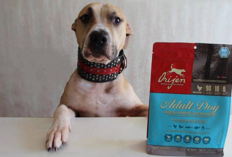 Корм для собак orijen dog six fish grain free