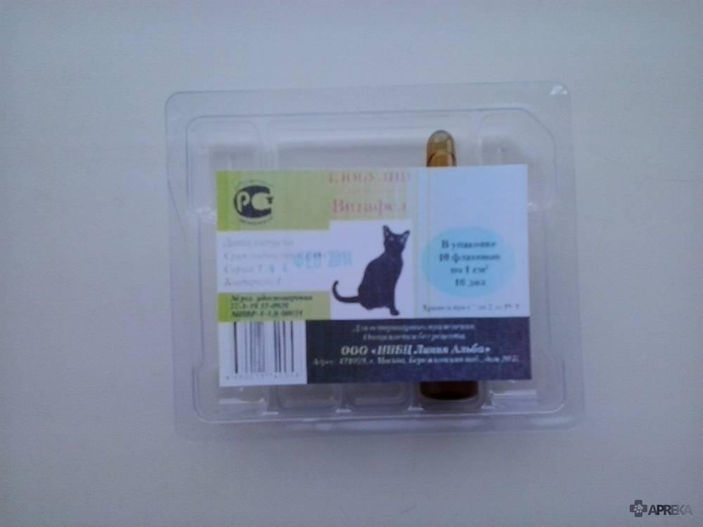Витафел с для кошек: инструкция по применению, отзывы, аналоги