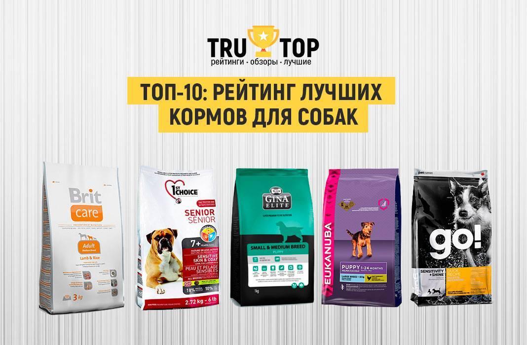 Рейтинг (2020) лучших сухих и влажных кормов для собак