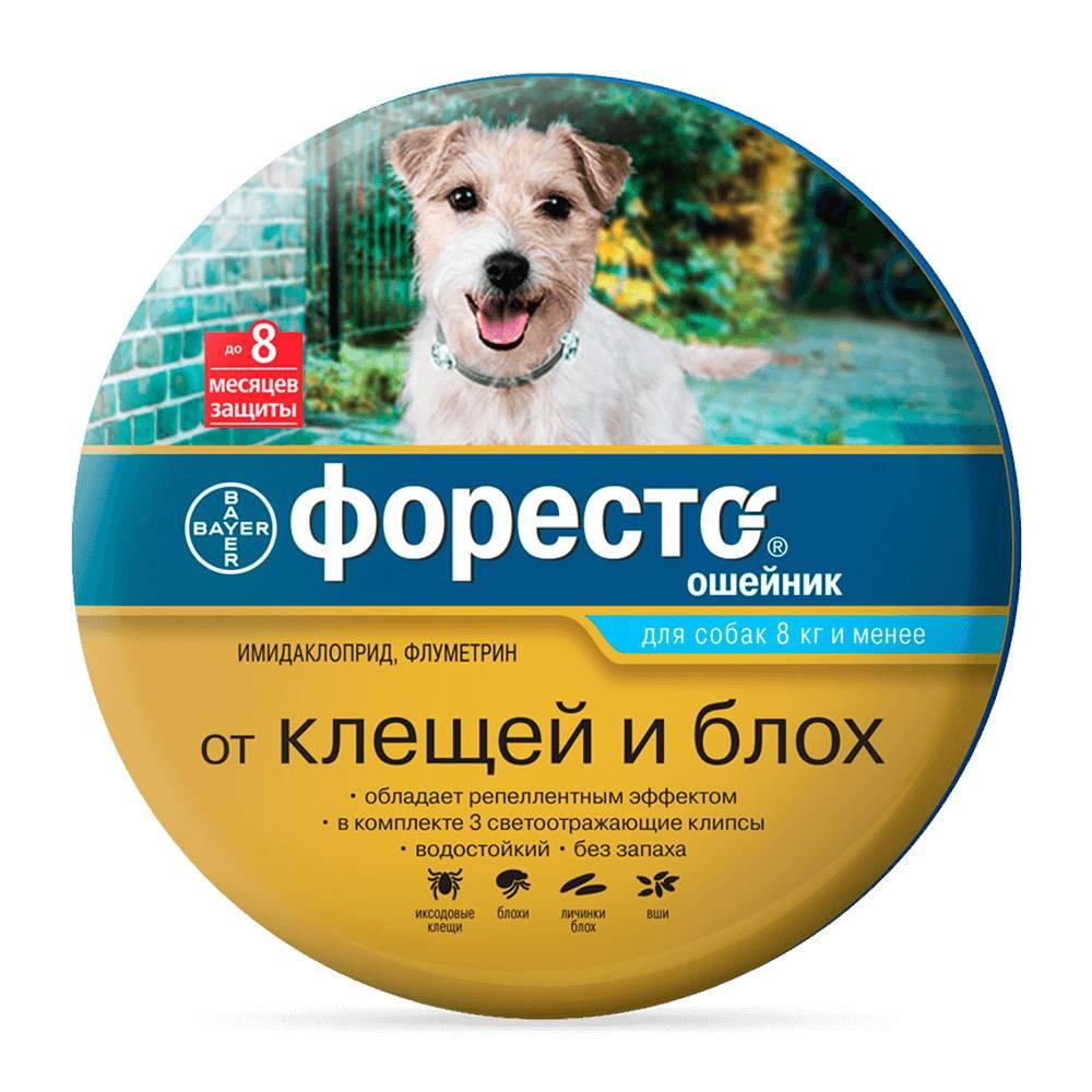 Лучшие ошейники от клещей для собак: обзор с ценами, советы по выбору