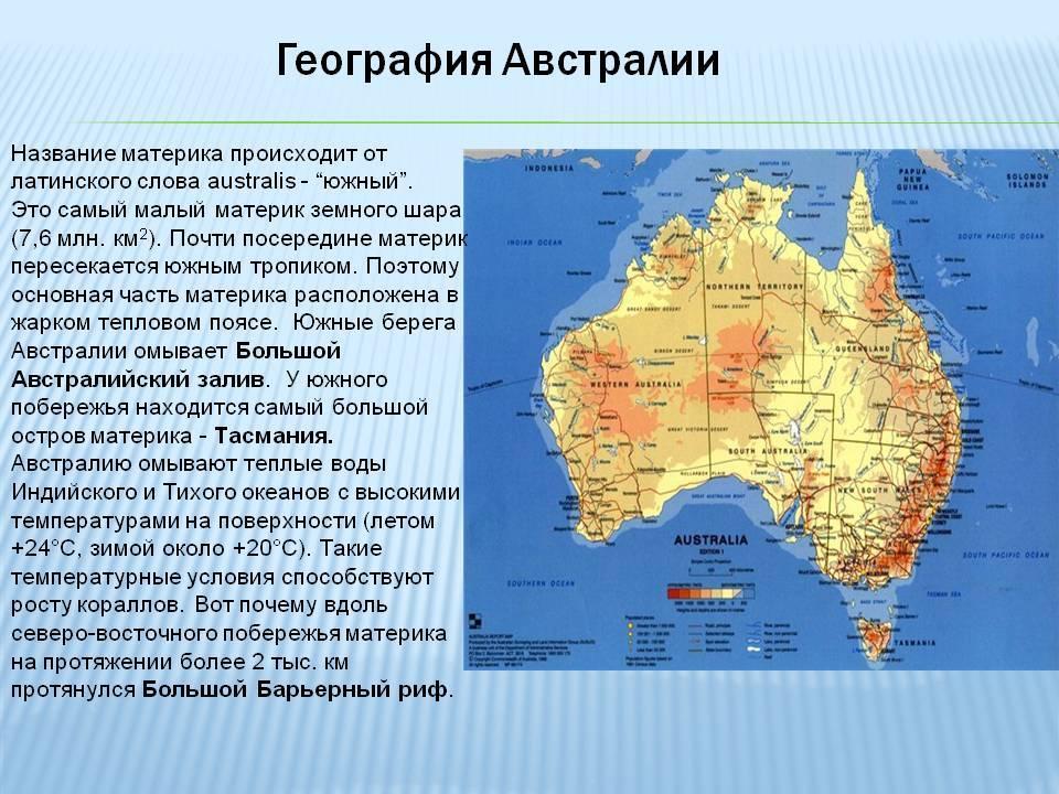 Австралийская дымчатая (австралийский мист)