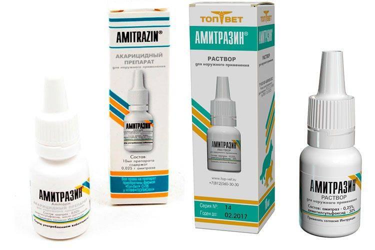 Амитразин (раствор) для кошек и собак | отзывы о применении препаратов для животных от ветеринаров и заводчиков