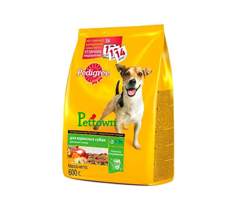 Выбираем лучшие корма для собак маленьких пород в 2021 году