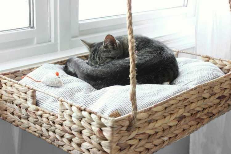 Лежанка для кошки из свитера своими руками