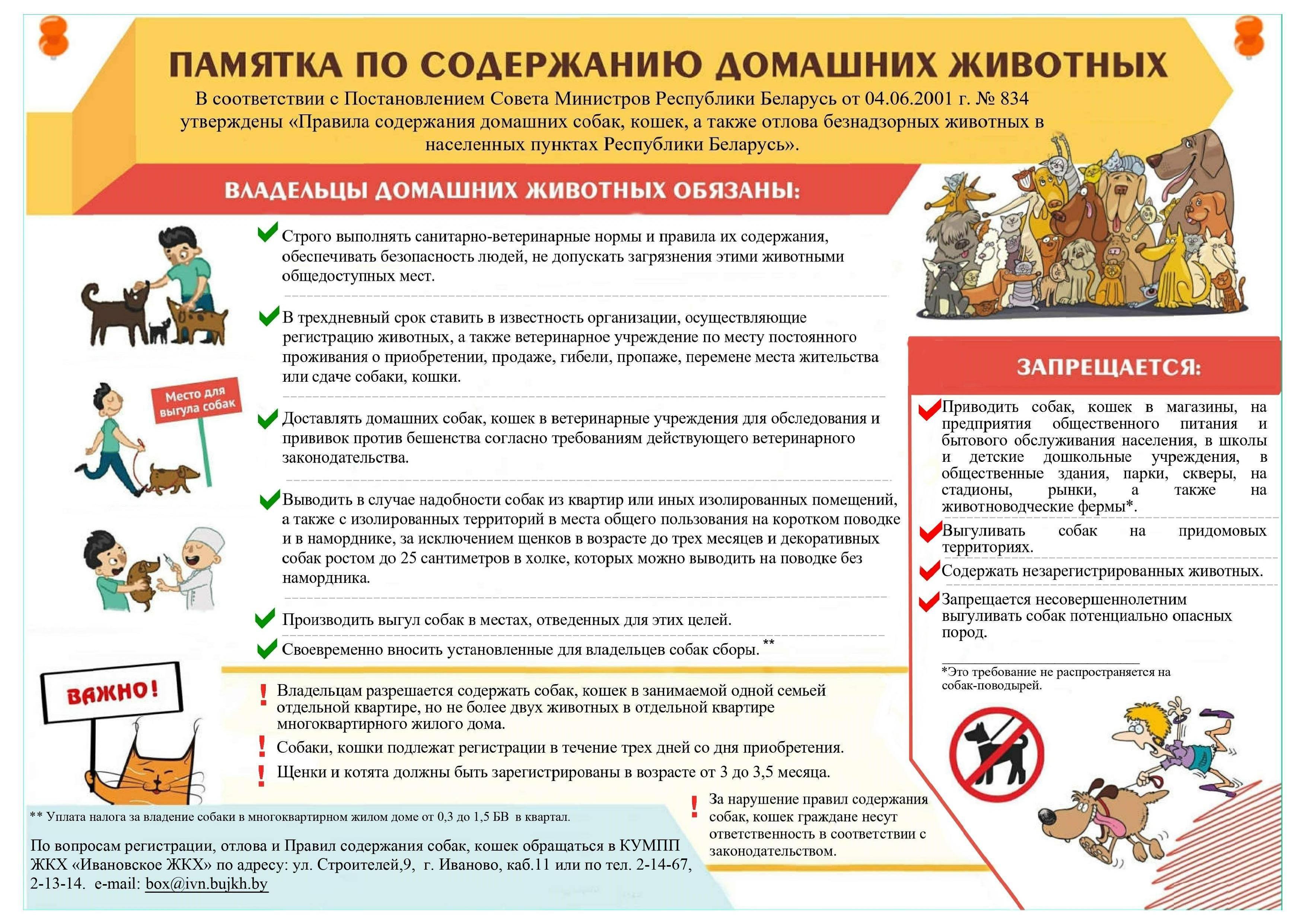 Почему православным нельзя держать дома собаку? | полезная информация для всех