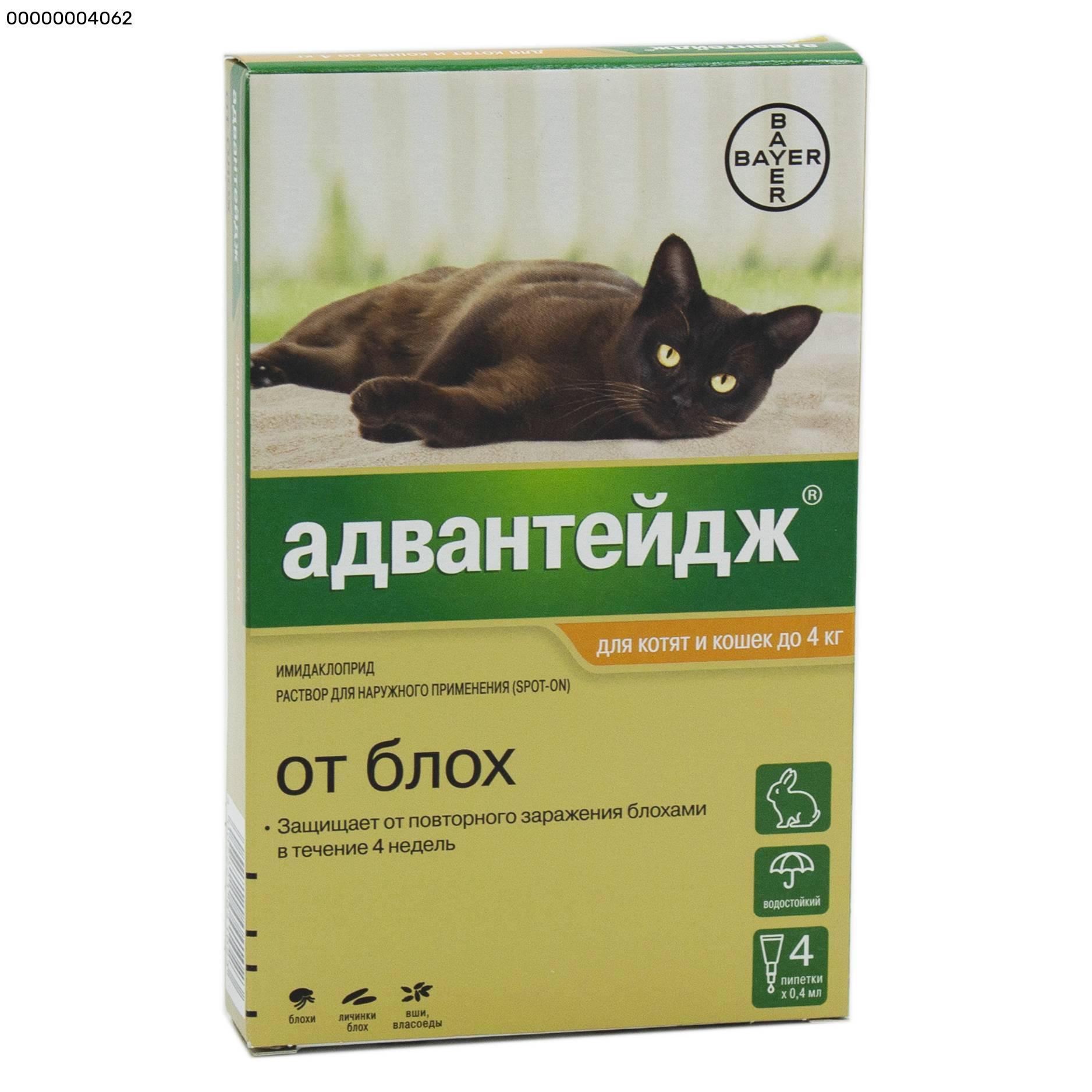 Капли для котят и кошек bayer адвантейдж от блох весом до 4кг, 1 пипетка в упаковке (капли, 0.4 мл) - цена, купить онлайн в санкт-петербурге, интернет-магазин зоотоваров - все аптеки