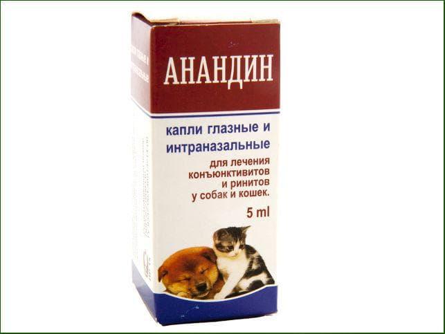 Максидин для кошек — отзывы