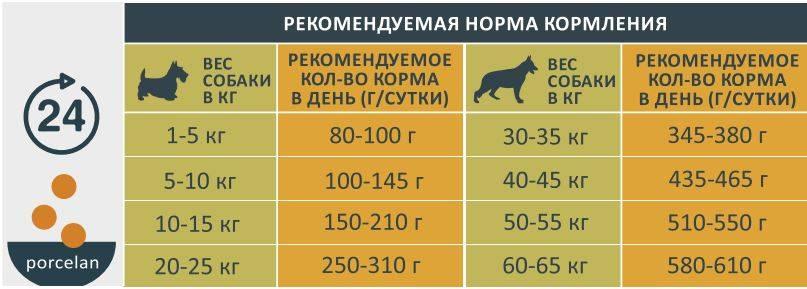 Нужно ли солить еду собакам