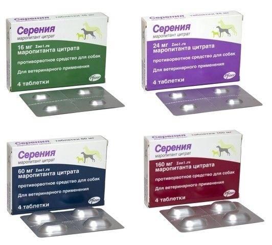 Серения (раствор для инъекций) для собак и кошек | отзывы о применении препаратов для животных от ветеринаров и заводчиков