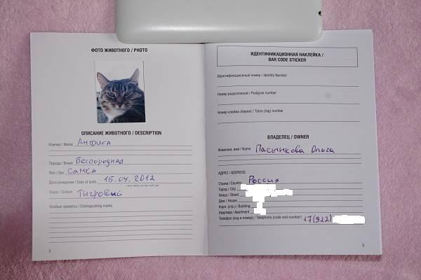 Как сделать ветеринарный паспорт кошке? (инструкция)