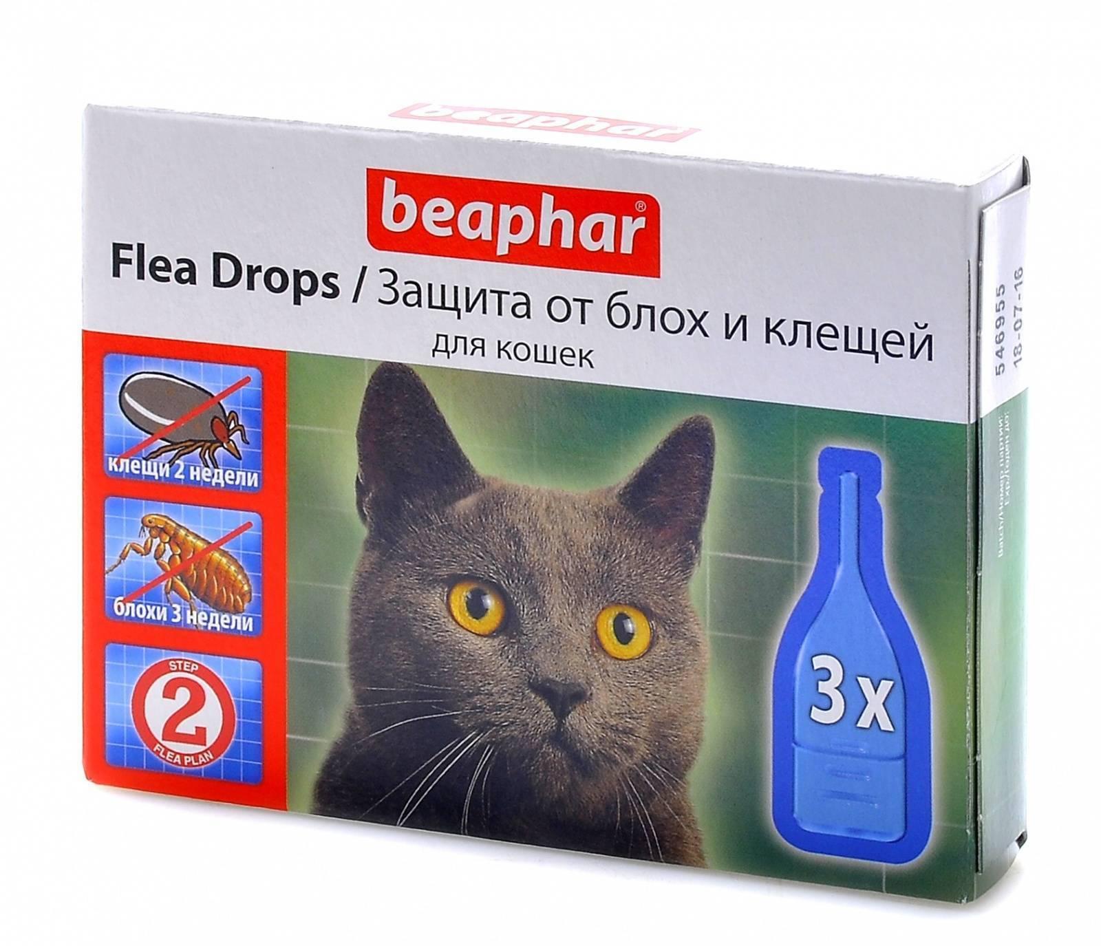 Лучшие капли на холку для кошек от блох и глистов