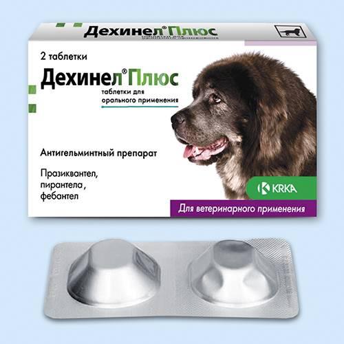 Дехинел плюс для собак: инструкция и показания к применению, отзывы, цена