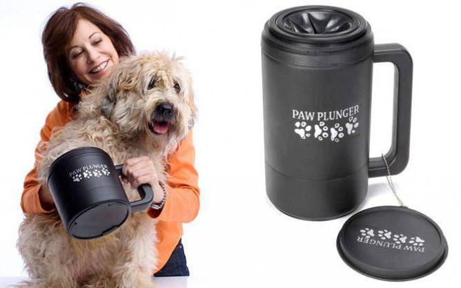 Лапомойка для собак: как выбрать или сделать своими руками