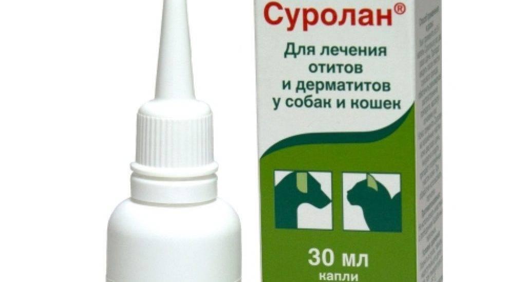 Суролан (капли) для собак и кошек   отзывы о применении препаратов для животных от ветеринаров и заводчиков