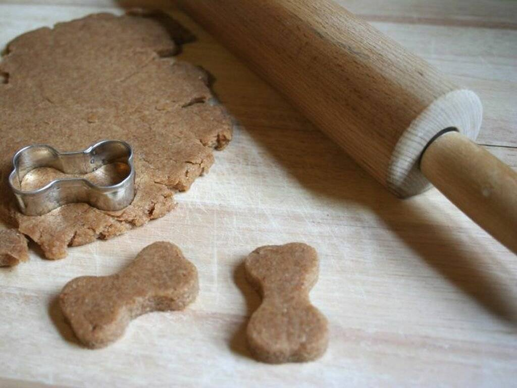 Как выбрать лакомство для собак при дрессировке или приготовить в домашних условиях