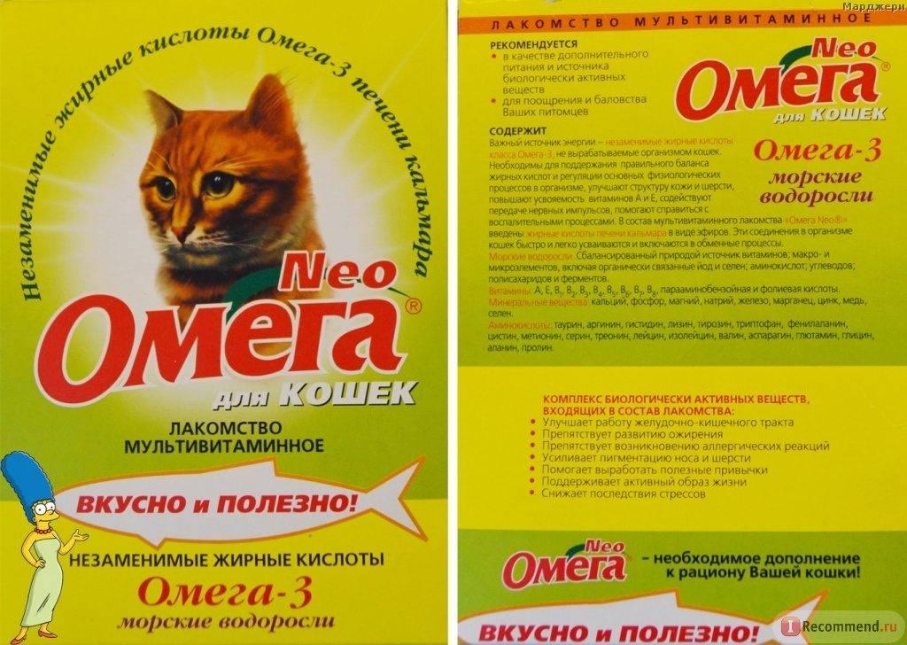 Жидкие витамины для кошек: какие лучше, состав, виды, отзывы ветеринаров