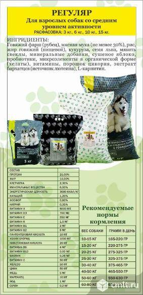 Корма для собак bisko (биско): ассортимент, состав, гарантированные показатели производителя, плюсы и минусы кормов, выводы