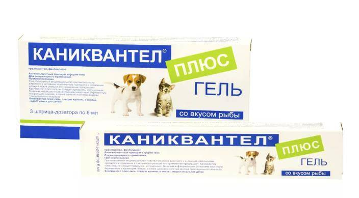 Каниквантел плюс для кошек: инструкция по применению, показания и противопоказания, аналоги, отзывы