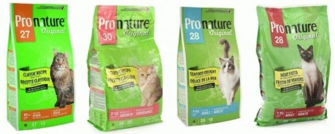 Корм для кошек pronature holistic: отзывы и разбор состава - петобзор