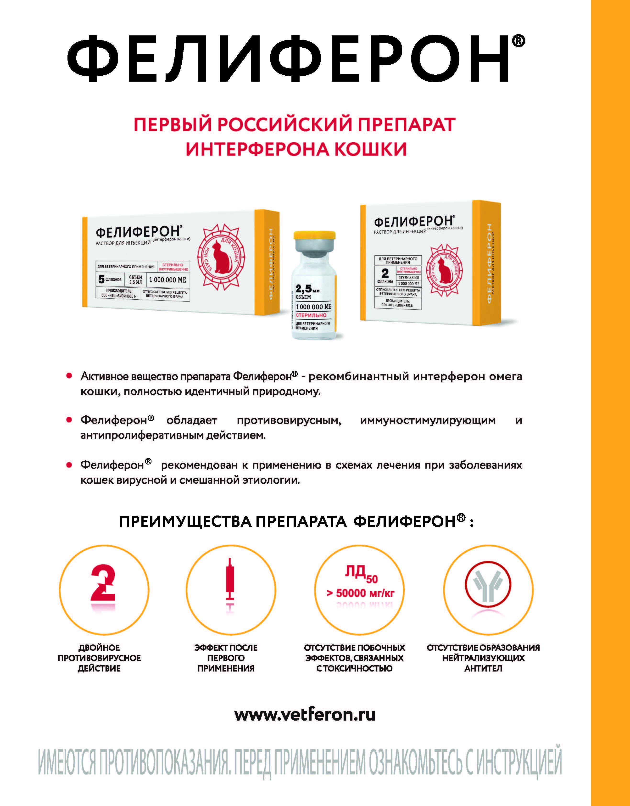 Фелиферон: лекарство от инфекционных заболеваний у котов