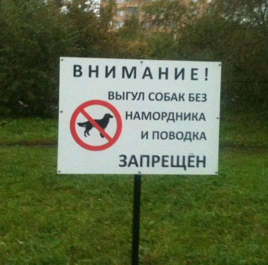 7 штрафов для владельцев собак. за что привлекают к ответственности