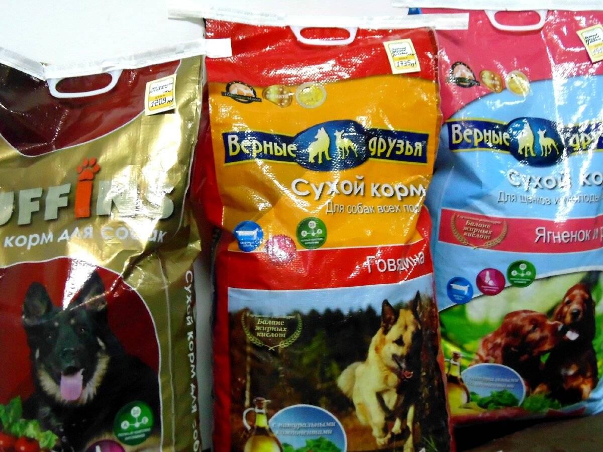 Рейтинг влажных кормов для собак: среди эконом, премиум, суперпремиум и холистик классов