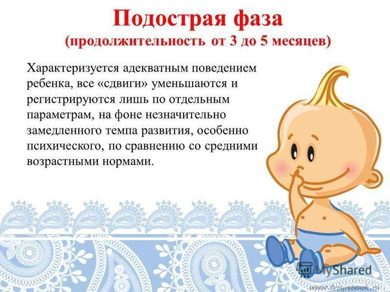 7 правил поведения адекватной и здоровой кошки | gafki.ru | яндекс дзен