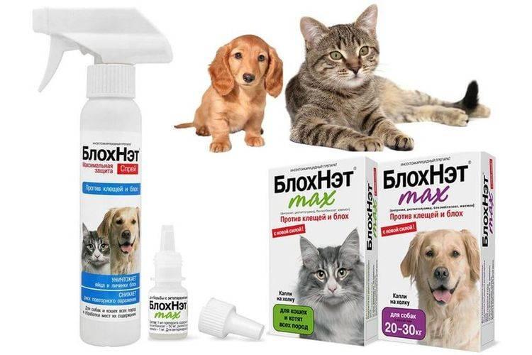 Спрей и капли блохнэт для кошек и собак – инструкция по применению, отзывы