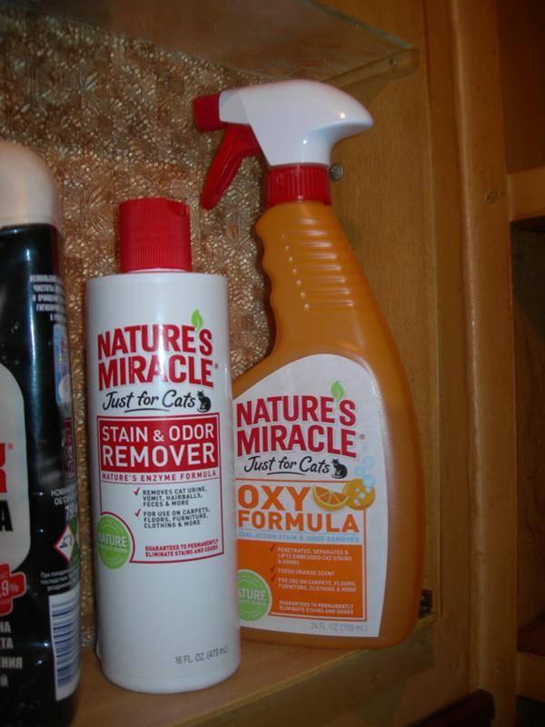 Как бороться с кошачьим запахом в доме