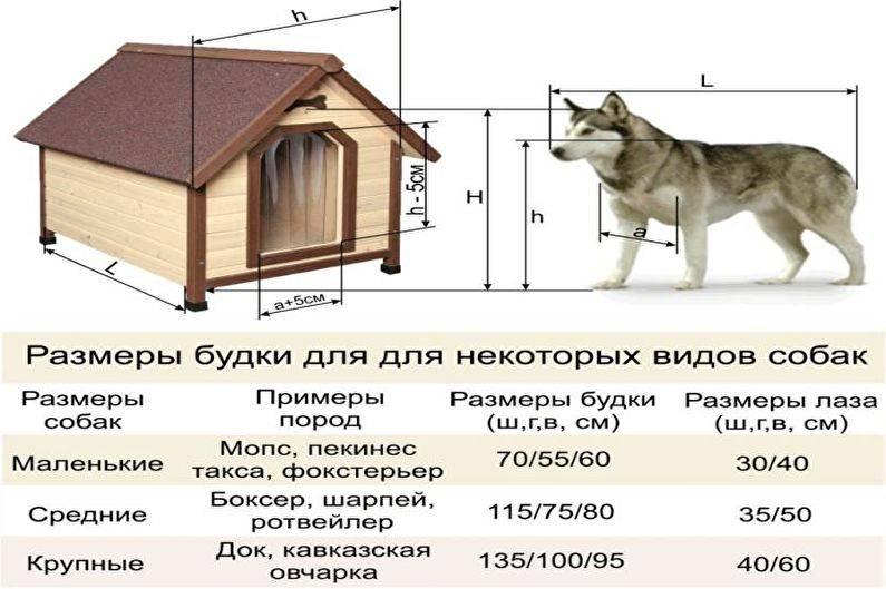 Вольер для собаки в квартиру своими руками: пошаговая инструкция с фото вольер для собаки в квартиру своими руками: пошаговая инструкция с фото