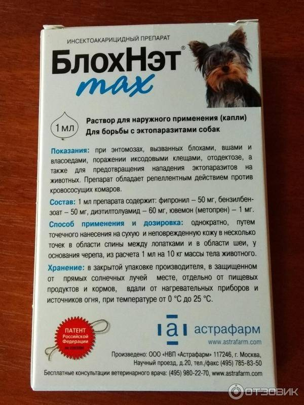 Топ-13 эффективных капель от блох для кошек: обзор, отзывы и цены
