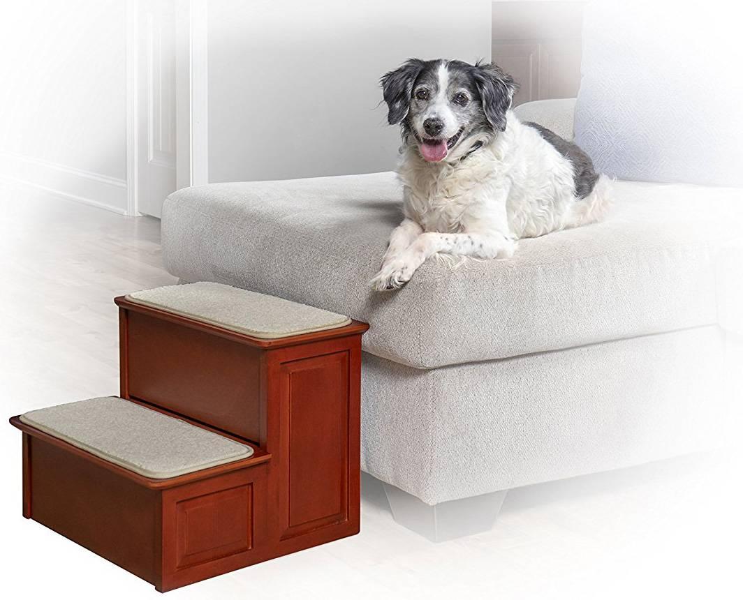 Как сделать прикроватную лестницу для маленькой собаки: пошаговая инструкция