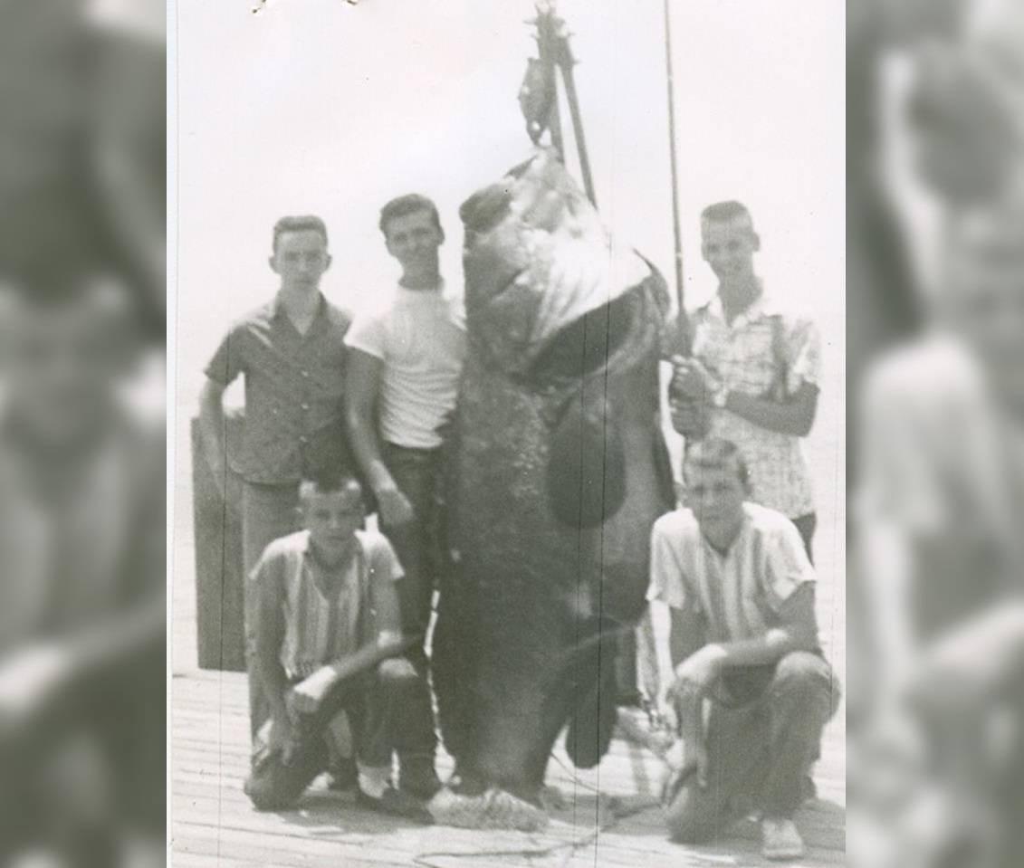 Невероятные рекорды среди животных