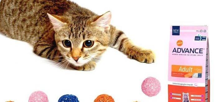 Advance корм для котят (с 2 до 12 месяцев) baby protect kitten, 0,4 кг