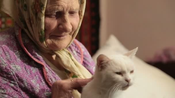 Кормление старых кошек
