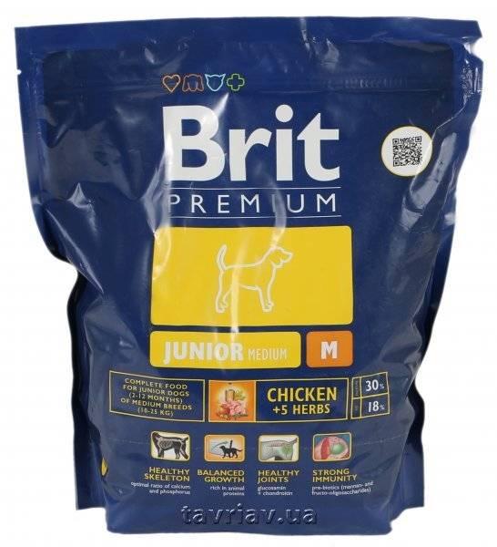 Корм для собак brit premium (брит премиум): отзывы, обзор состава, цена