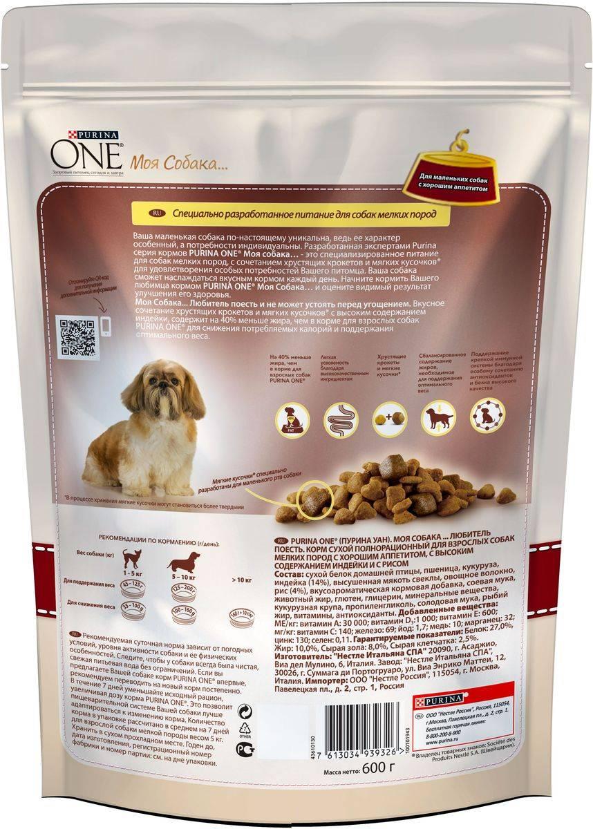Рейтинг лучших кормов для собак крупных и мелких пород