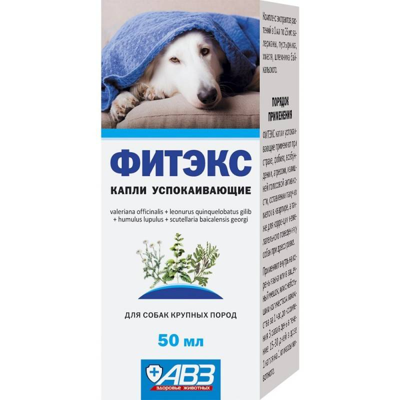 Фитэкс для собак защитит от стресса