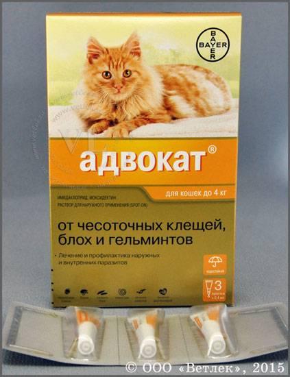 Адвокат для кошек до 4 кг упак 3 пипетки