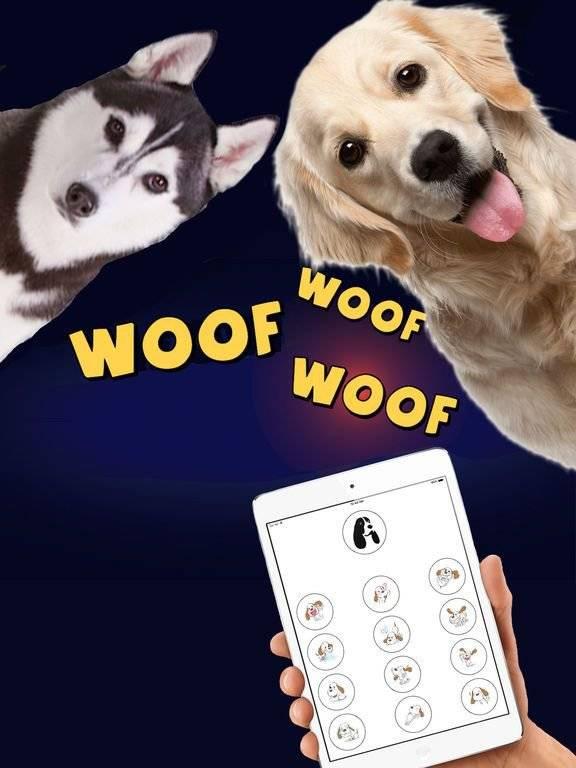 Доктор дулиттл больше не нужен: создано приложение, которое способно переводить непонятное кошачье мяуканье на человеческую речь
