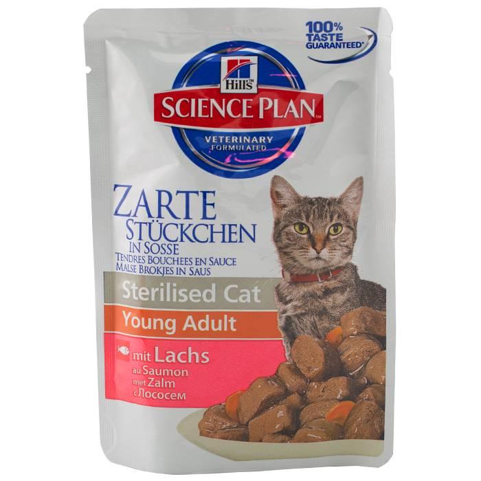 Корм для кошек hills («хиллс»): ветеринарный, для стерилизованных животных, для котят и прочее, отзывы ветеринаров