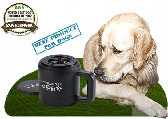 Лапомойка для собак: понятие, виды, инструкция по изготовлению, отзывы
