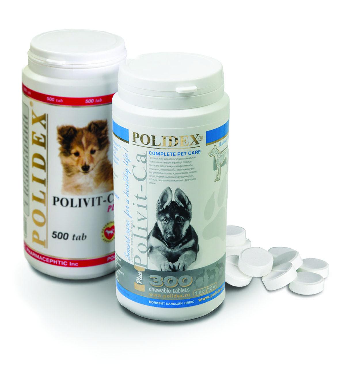 Какие витамины нужны собаке и щенку для шерсти, суставов и лап