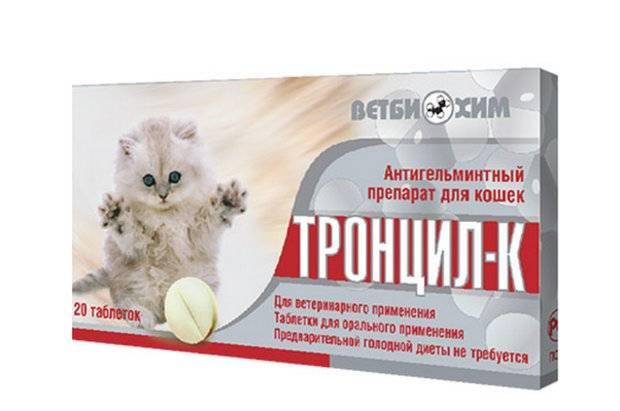 Тронцил-к для кошек: антигельминтная защита питомца
