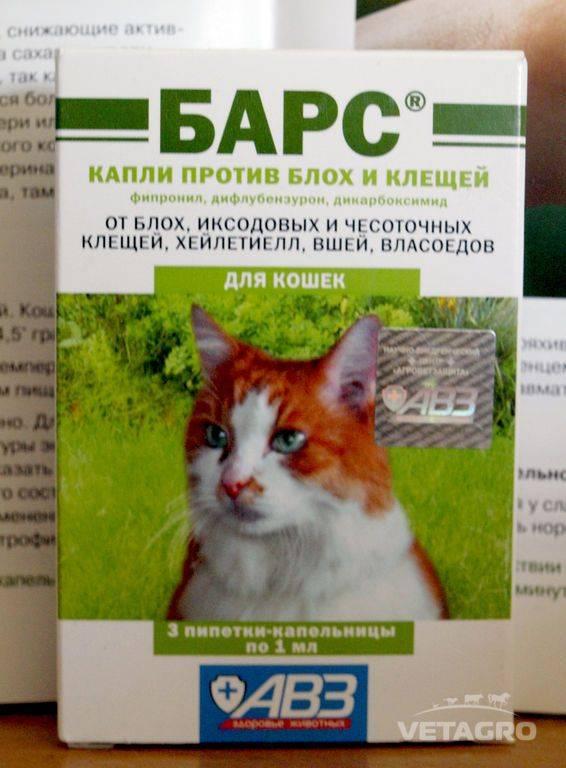 Барс форте капли для кошек - купить, цена и аналоги, инструкция по применению, отзывы в интернет ветаптеке добропесик